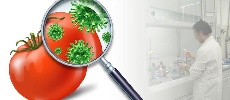 HACCP  Autocontrollo alimentare